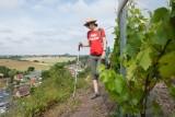 cultivons-la-terre-noire-2019-06-30-pidz-103-2714