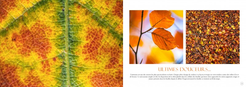 double-pages-b-f-automne-3450